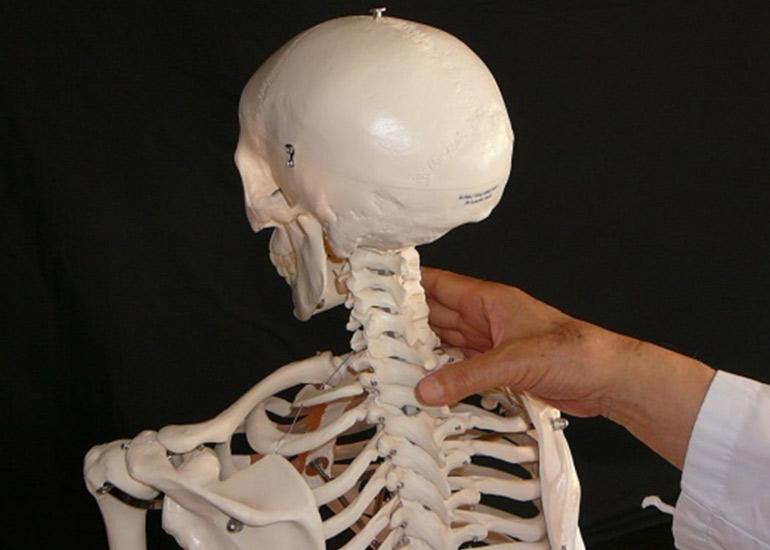 C7/T1椎間関節ANT